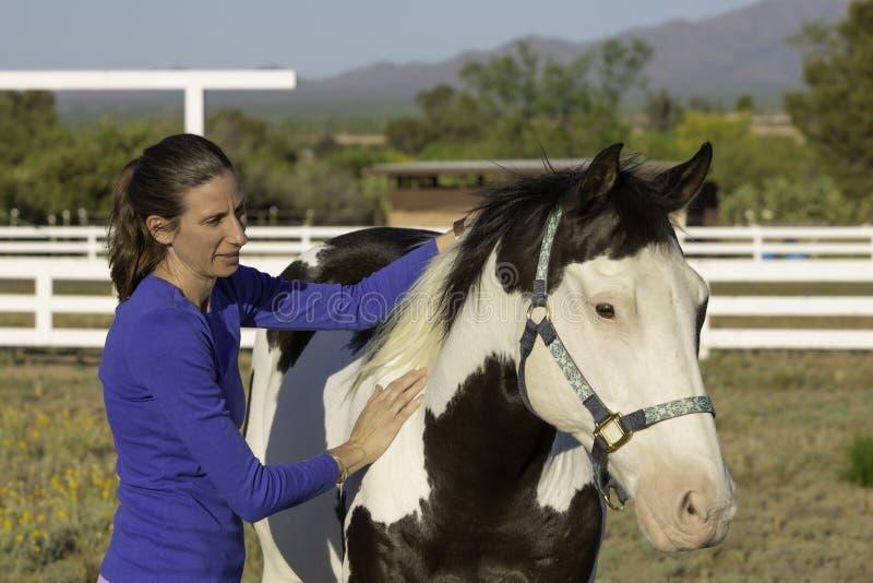 Häst- Myofascial frigörare Techninque på skuldra arkivfoto