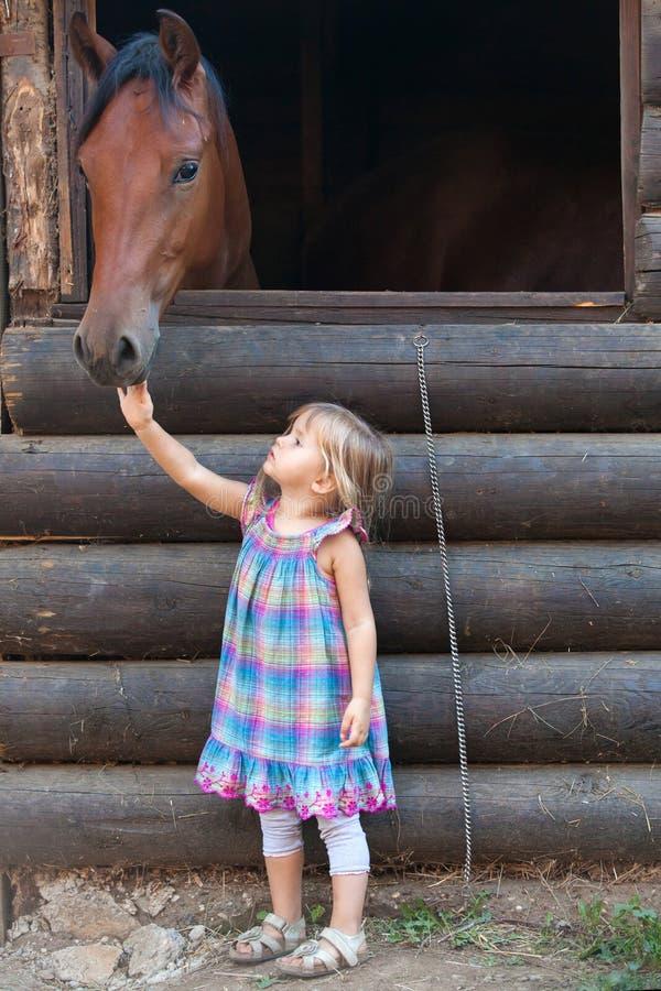 Häst och barn royaltyfria bilder
