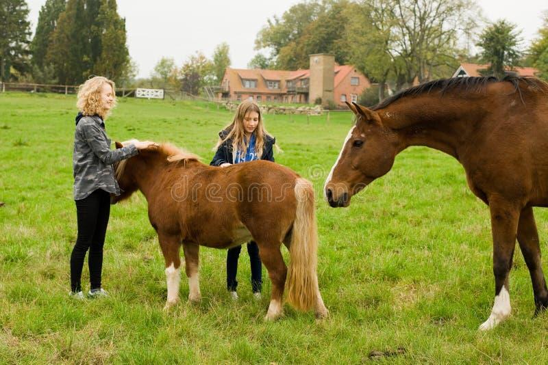Häst och barn royaltyfri fotografi