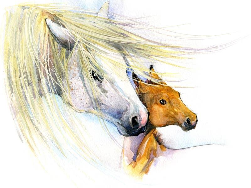 Häst- och fölmoderskap bakgrundshälsningsillustration royaltyfri illustrationer