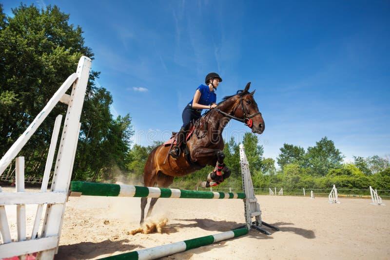 Häst och kvinnligjockey som hoppar över barriär arkivbilder