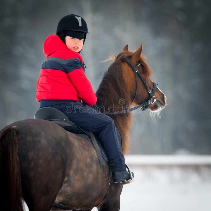 Häst och pojke - barnridninghästrygg arkivfoto