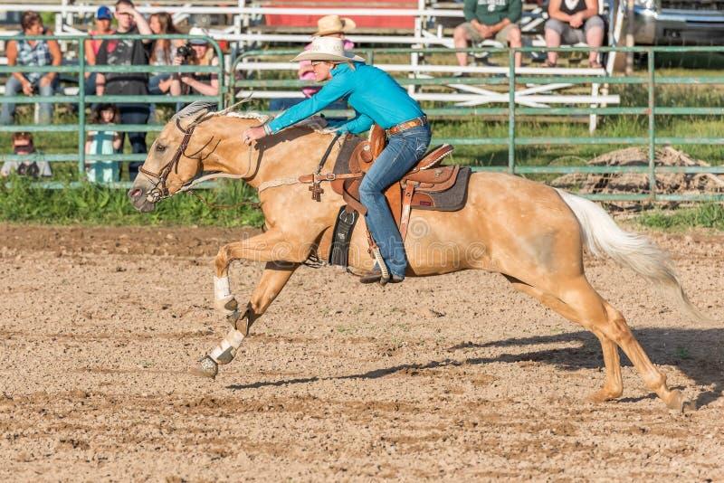 Häst och ryttare fulla gallup på loppen arkivbilder