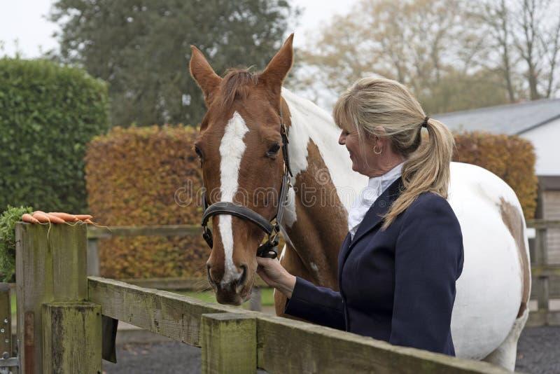 Häst och ryttare Skicklig ryttarinna med en skäckig häst arkivfoton
