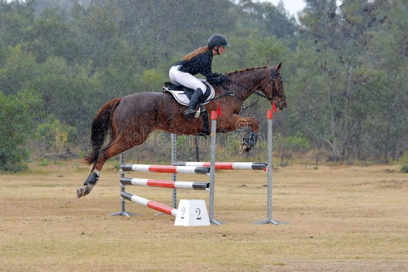 Häst- och ryttareshowbanhoppning i hällregn royaltyfri fotografi
