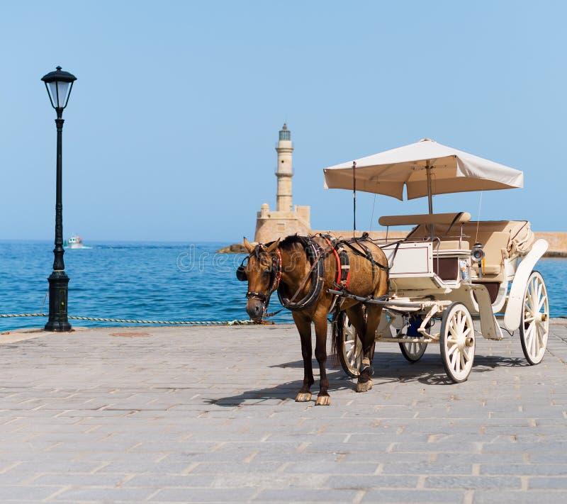 Häst och tappningvagn royaltyfria foton