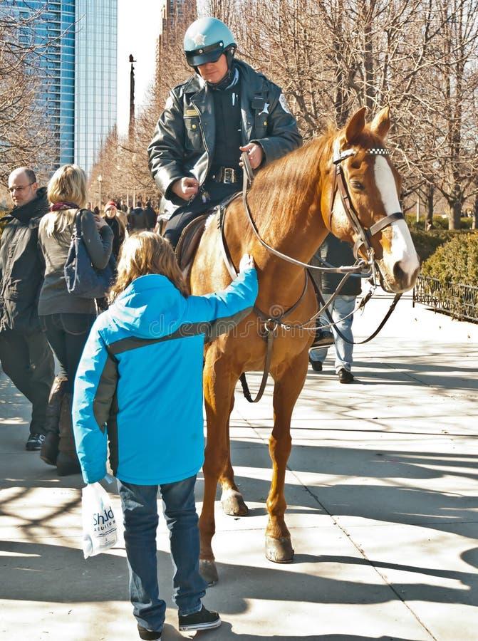 häst som jag förser med polis royaltyfria bilder