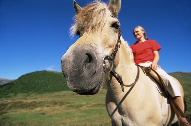 häst som rider lantligt inställningskvinnabarn royaltyfri foto