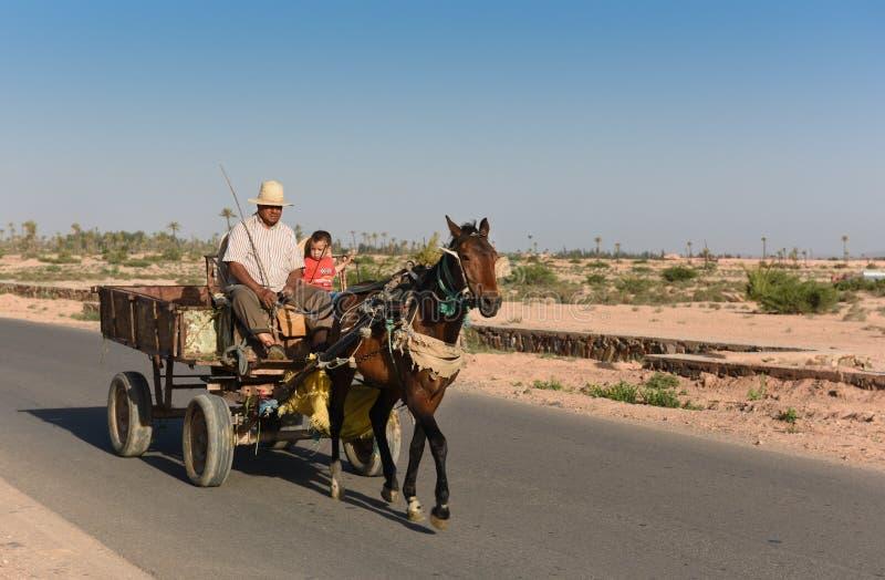 Häst & vagn i Marocko royaltyfri foto
