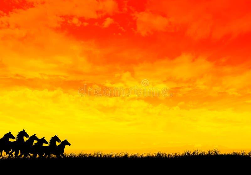 hästar vektor illustrationer