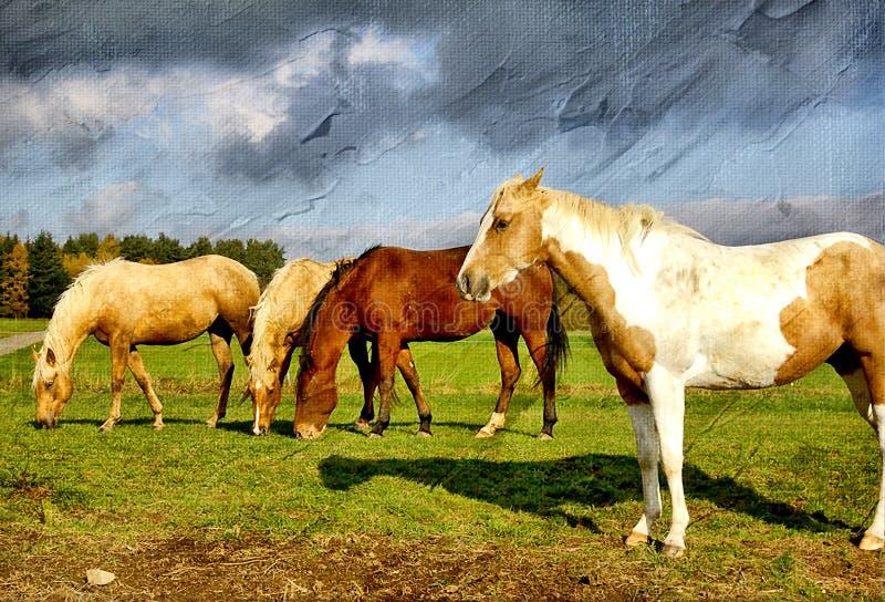 hästar royaltyfri illustrationer