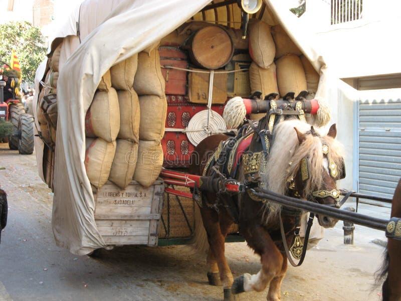 Hästar i sele royaltyfri fotografi
