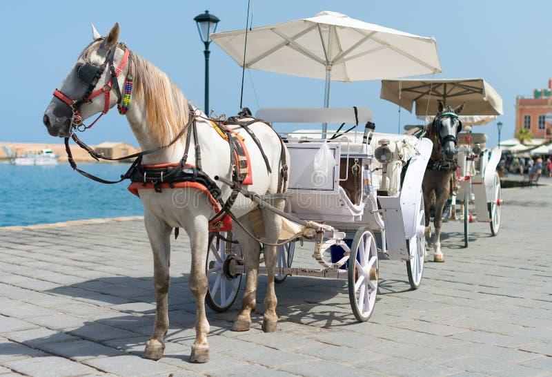 Hästar och tappningvagnar royaltyfri bild