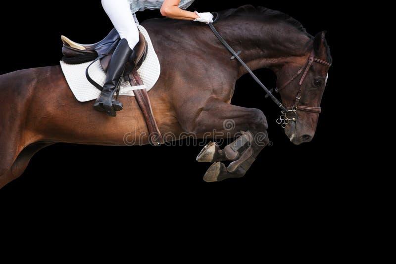 Hästbanhoppning på svart bakgrund arkivbilder
