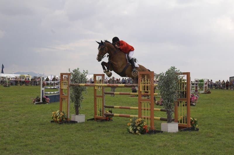 hästbanhoppningshow arkivfoton