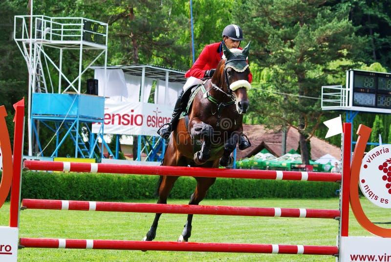 hästbanhoppningsport royaltyfri bild