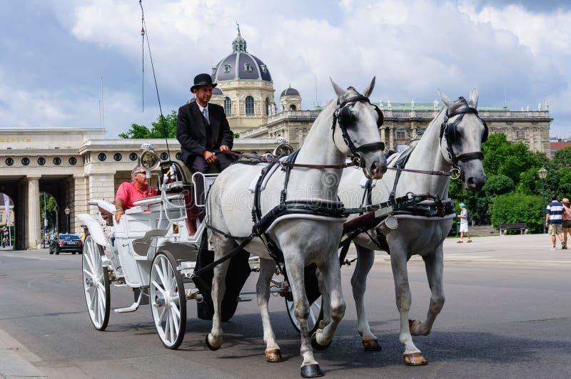 hästdragen vagnstradition, Wien Österrike royaltyfri foto
