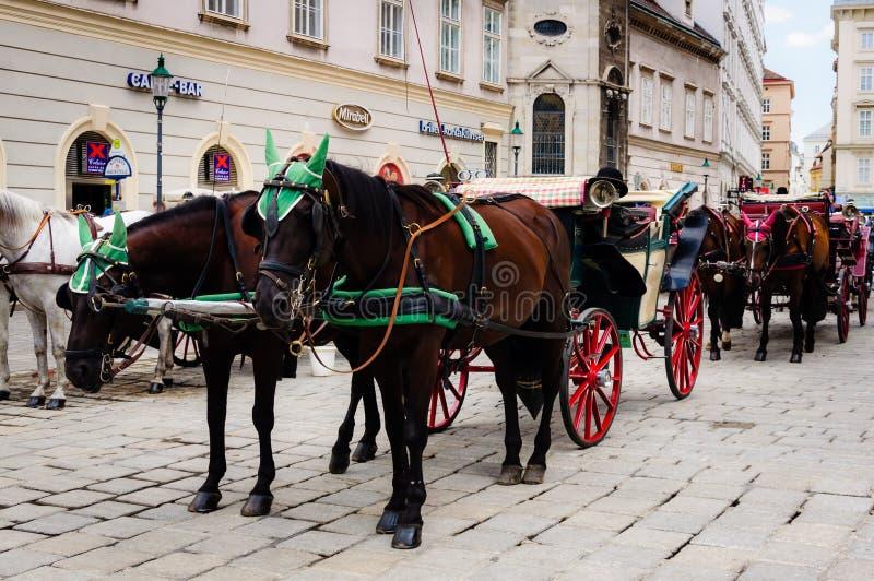 hästdragen vagnstradition, Wien Österrike royaltyfria bilder