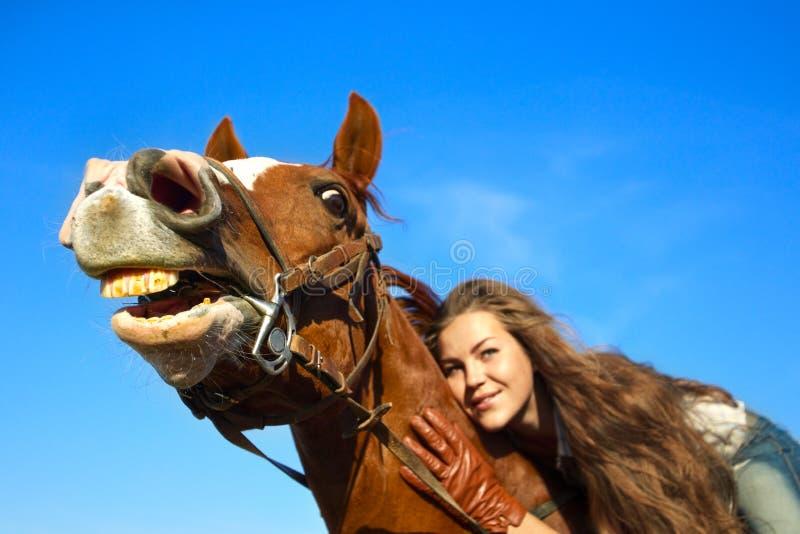 Hästen Blidkar Avkänning Fotografering för Bildbyråer