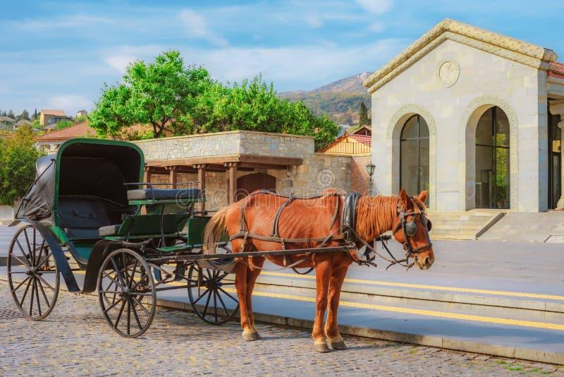 Hästen exploaterade i vagnen på gatan av den lilla sydliga staden royaltyfri fotografi