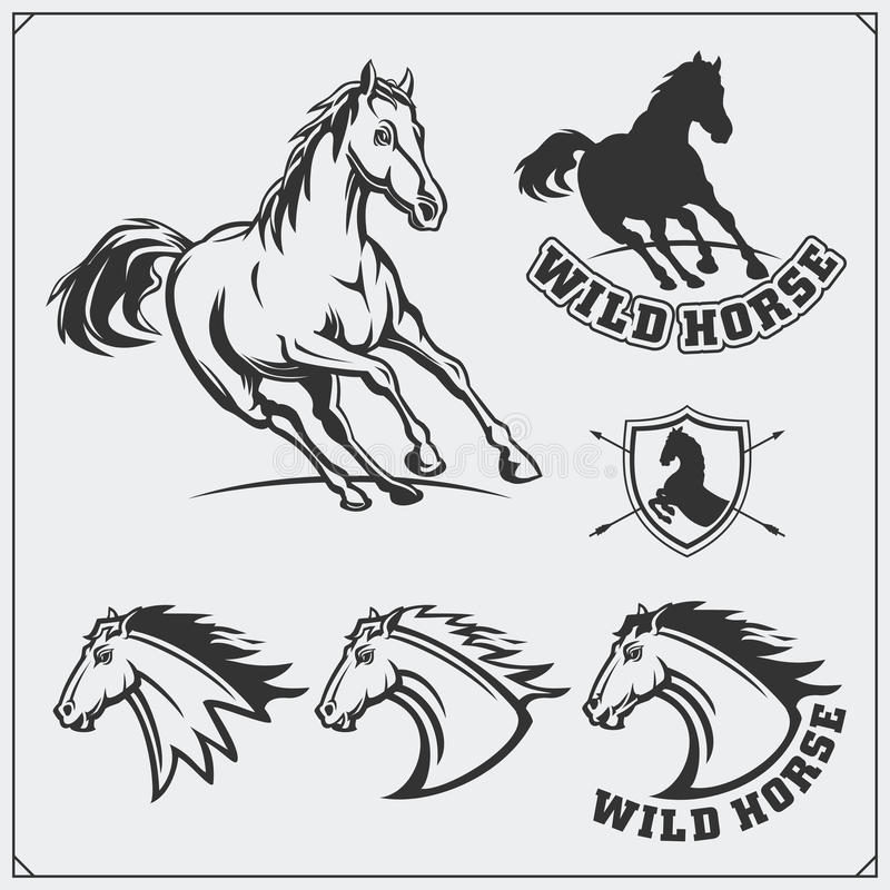 Hästheraldikvapensköld Etiketter, emblem och designbeståndsdelar för sportklubba royaltyfri illustrationer