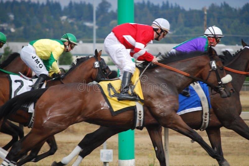 Hästkapplöpning i Seattle arkivfoto