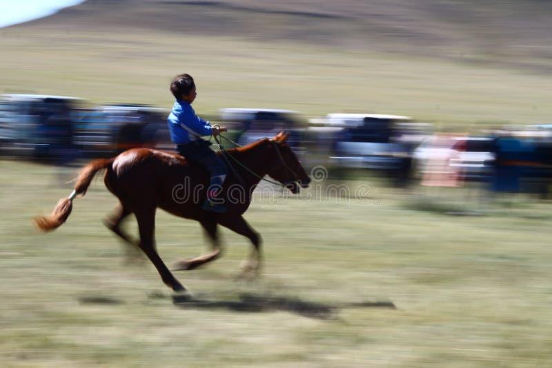 Hästkapplöpning på den Naadam festivalen med ett barn i Mongoliet fotografering för bildbyråer