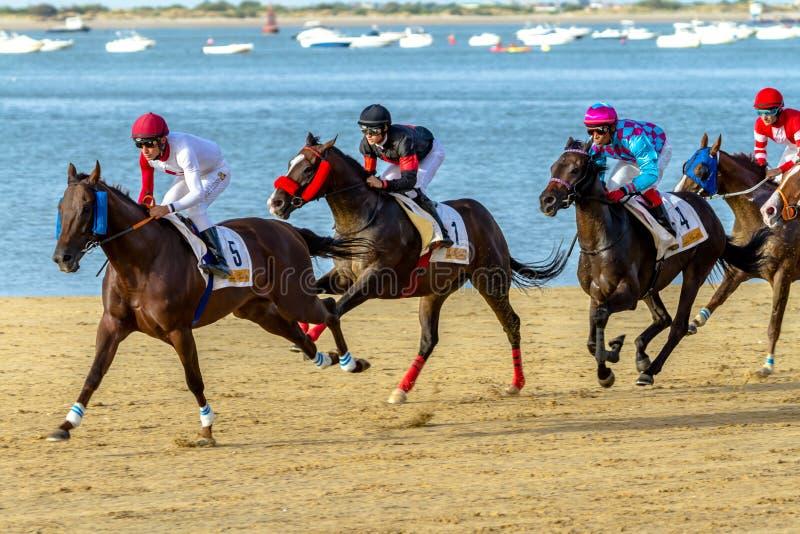 Hästkapplöpning på Sanlucar av Barrameda, Spanien, 2016 royaltyfri foto