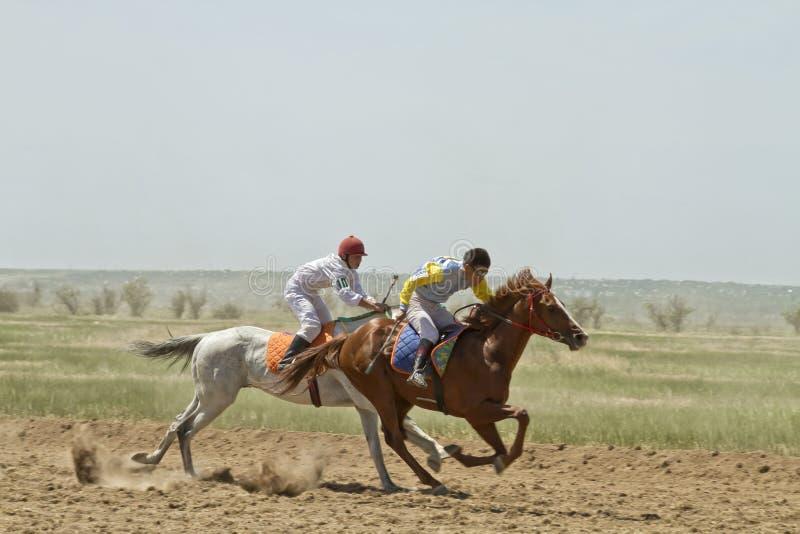Hästkapplöpningar arkivfoton