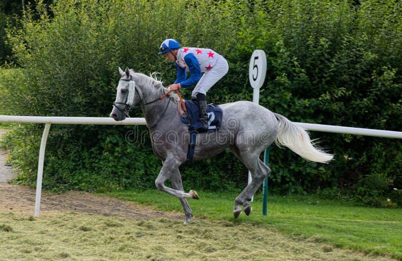Hästkapplöpningjockey Hector Crouch royaltyfri bild