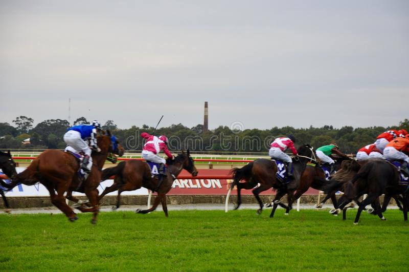 Hästkapplöpningkonkurrens arkivfoto