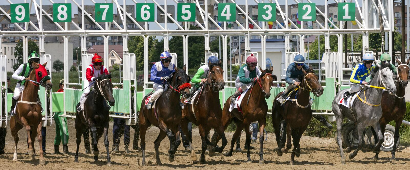 Hästkapplöpningstart arkivbilder