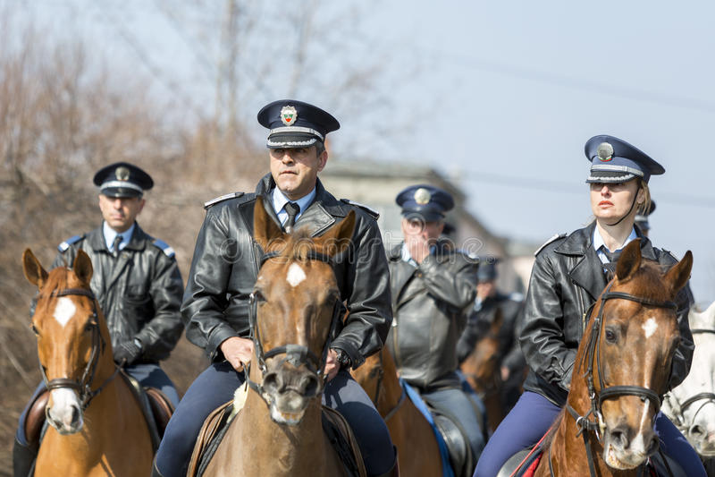 Hästpolisridning royaltyfria bilder
