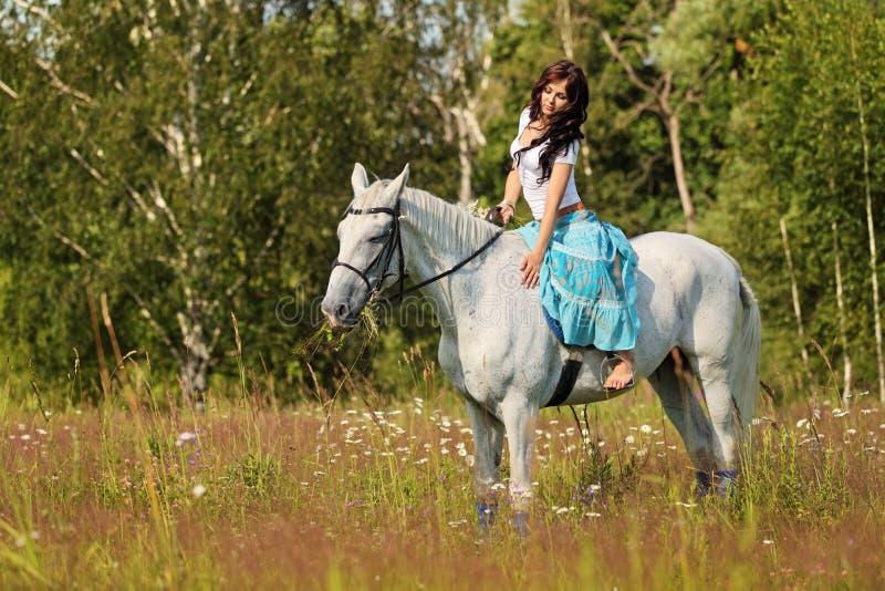 Hästridning arkivbild