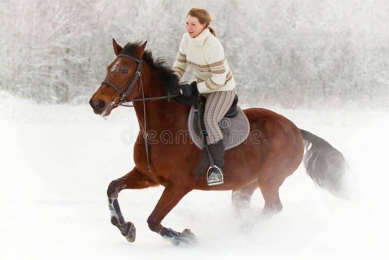 Hästridning i vinter arkivbilder