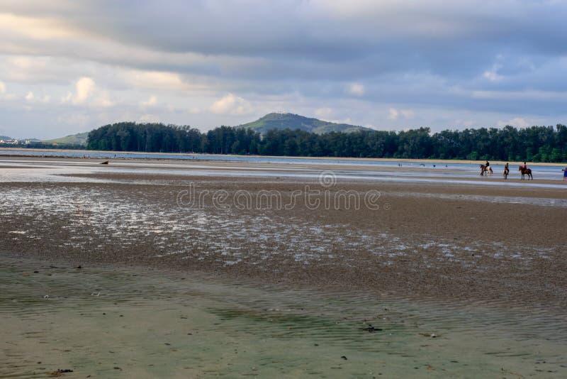 Hästridning som framme utbildar av stranden, hav bak himlen, träd royaltyfria foton