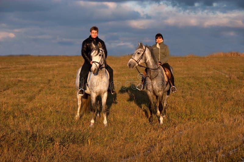 hästryggridning arkivbilder