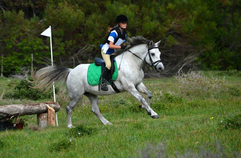 Hästryggryttare med ponnyn arkivbilder