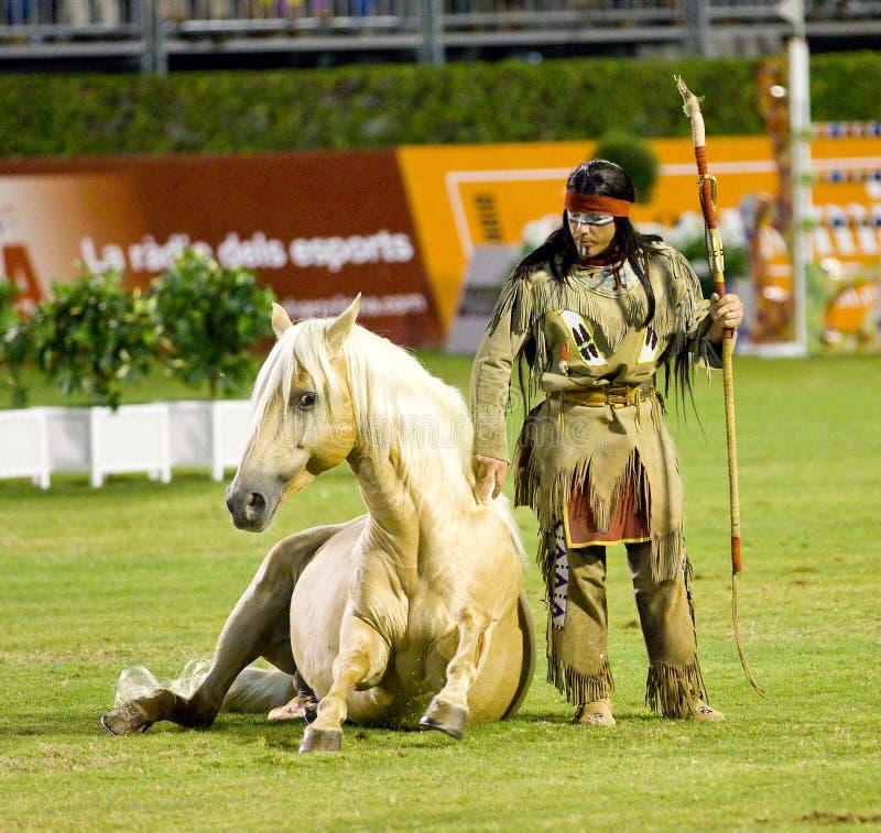 Hästshow royaltyfria foton