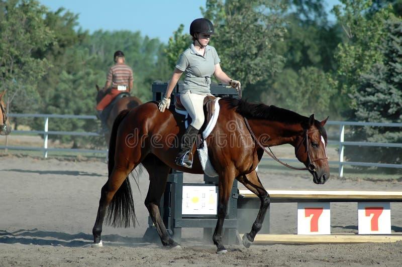 hästshow royaltyfri fotografi