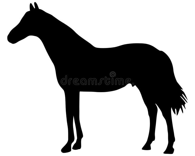 hästsilhouette vektor illustrationer
