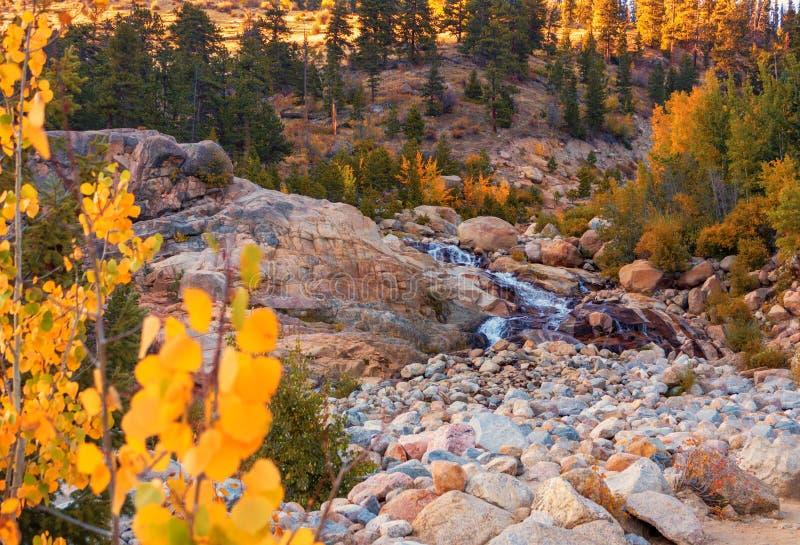Hästskonedgångar; Rocky Mountain National Park arkivbild