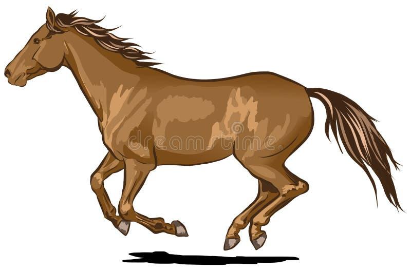 Hästspring vektor illustrationer