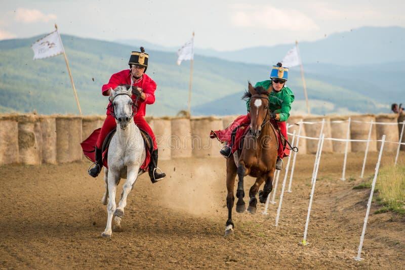 Häststrid, under en hästshow med unga ryttare royaltyfri fotografi