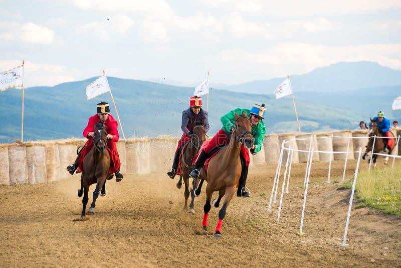 Häststrid, under en hästshow med unga ryttare arkivfoto