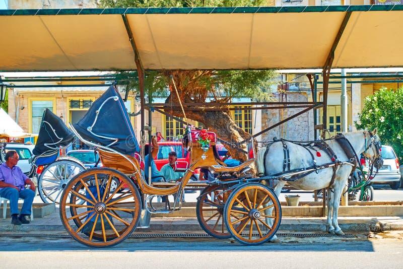 Hästtransport i staden Aegina royaltyfri foto