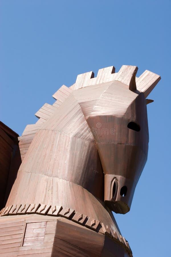 hästtrojan arkivfoton