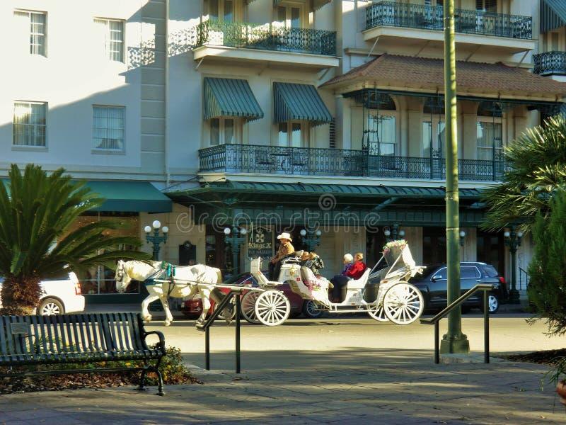 Hästvagn royaltyfri fotografi