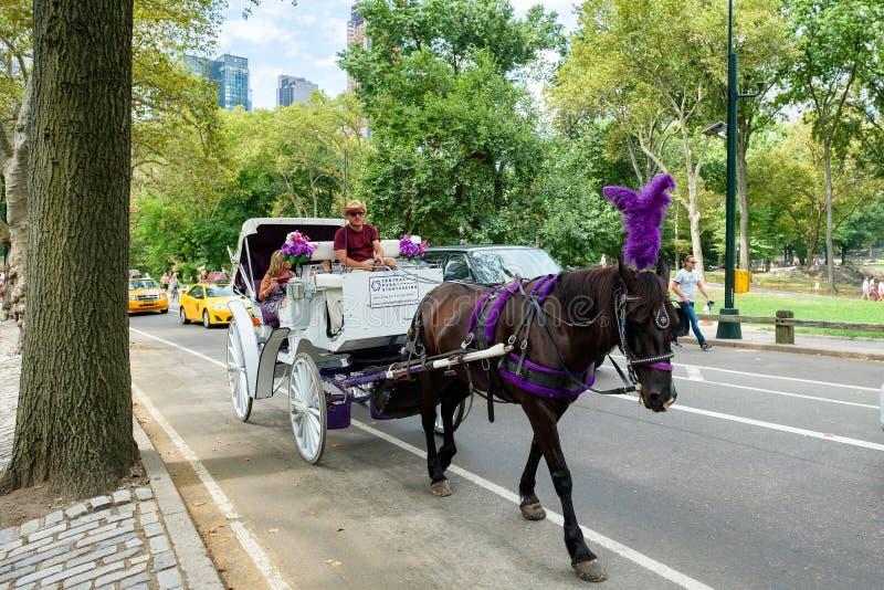 Hästvagn på Central Park i New York City royaltyfria foton