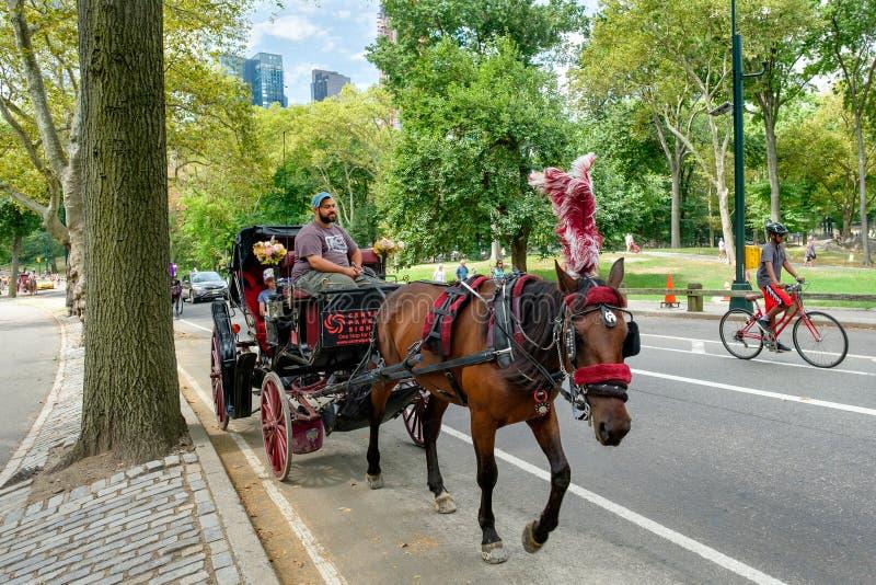 Hästvagn på Central Park i New York City royaltyfri foto